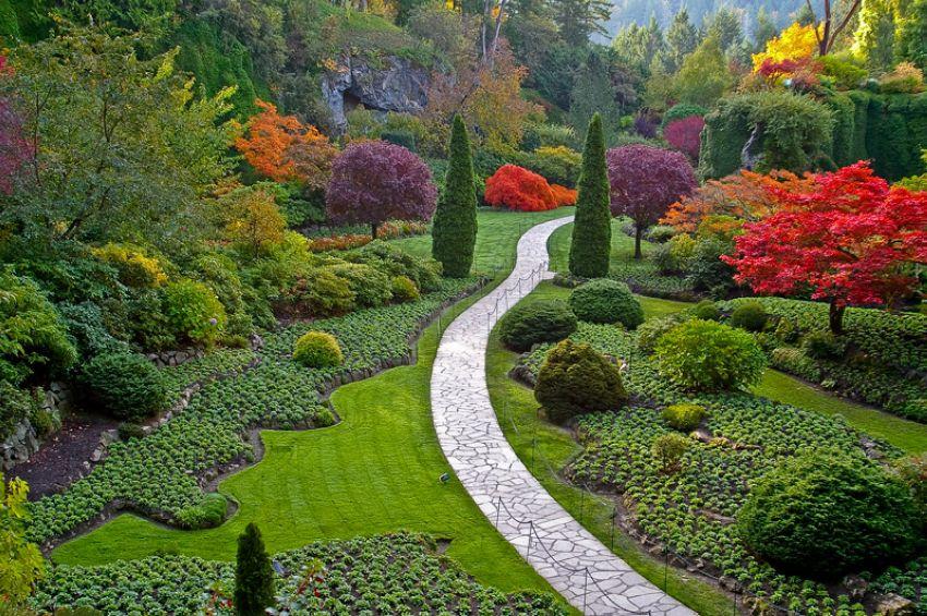 Самые красивые фото садов