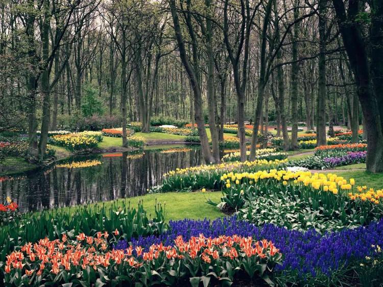 Keukenhof-Gardens2
