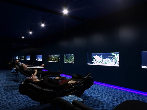 working-space-10-incredible-google-offices-5