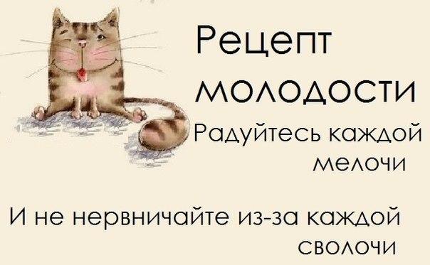 293910_452832231442842_546910194_n