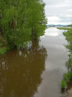 Устье Ушковской канавы