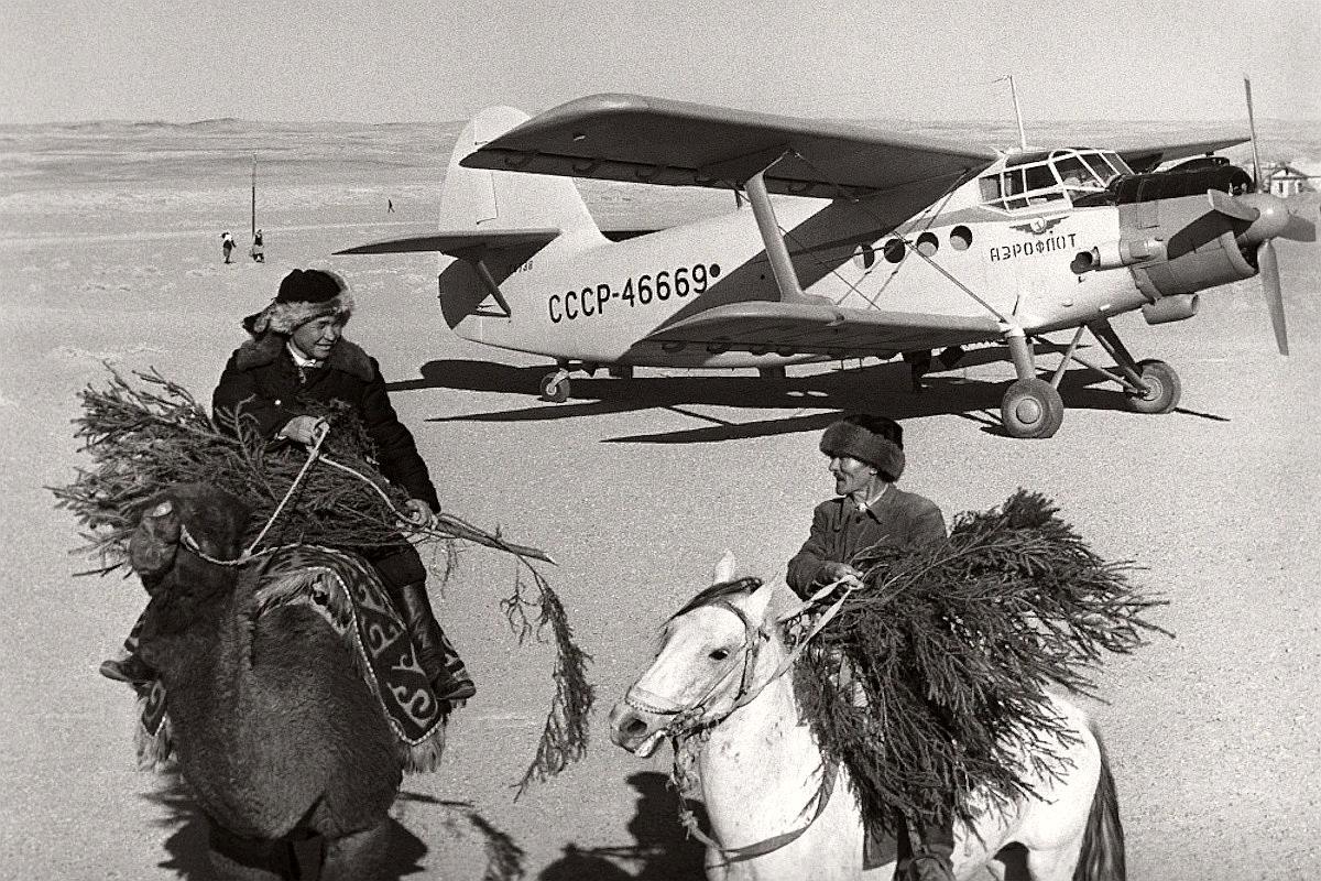 Самолет АН-2 доставил новогодние елки в Бухару, Узбекская ССР. 1965