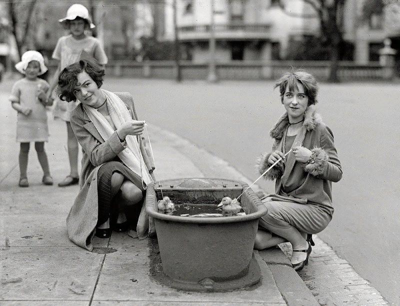 Купание утят. Вашингтон, 1927