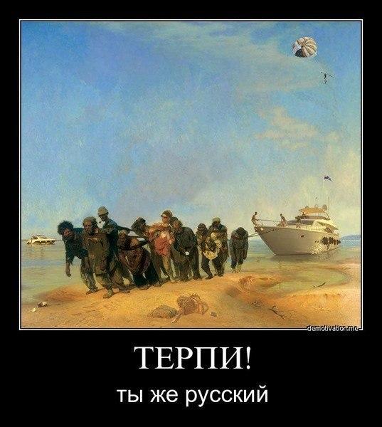 терпилы.с