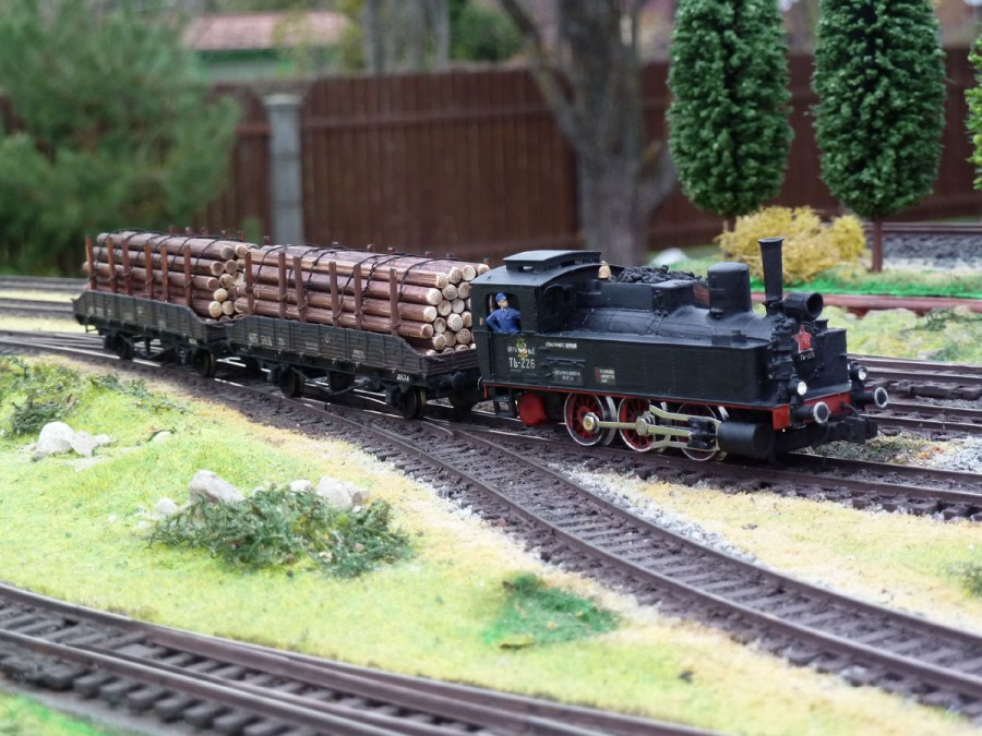 _Loko_TZ226_i_forest_train_7