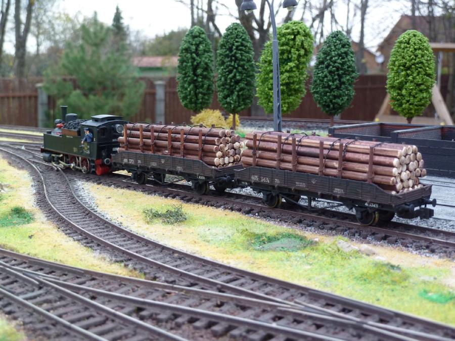 _Loko_TZ226_i_forest_train_6