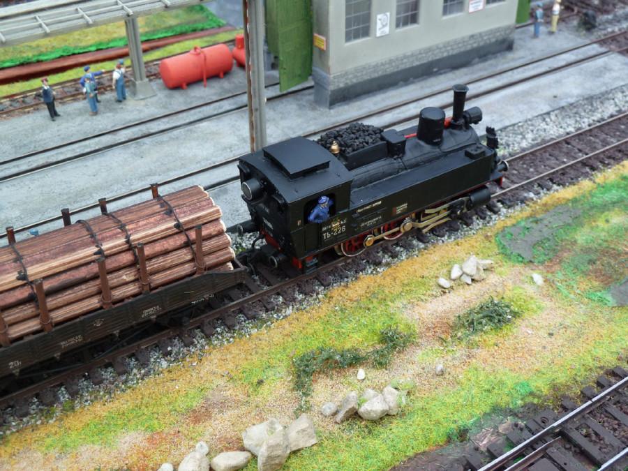_Loko_TZ226_i_forest_train_4
