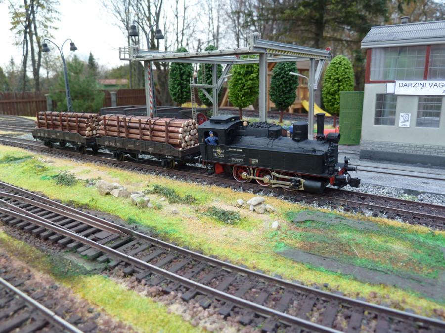 _Loko_TZ226_i_forest_train_2