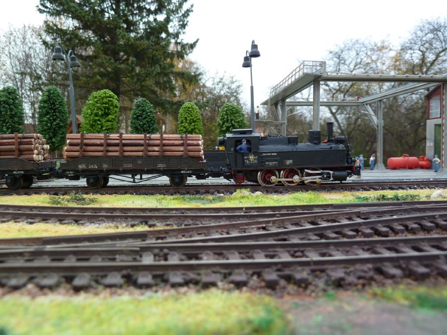 _Loko_TZ226_i_forest_train_1