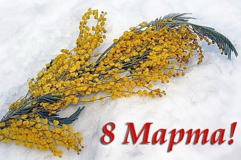 Открытка мимоза 8 марта