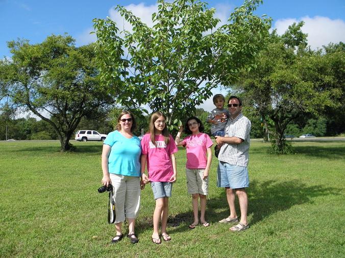 Visiting Aunt Sue's tree.