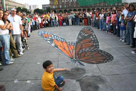 Butterfly Sidewalk Chalk - by The Chalk Man Edgar Mueller