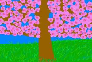 Cherry Blossoms - dodger_sister.jpg