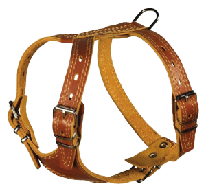 Harness (8)