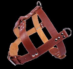 Harness (15)