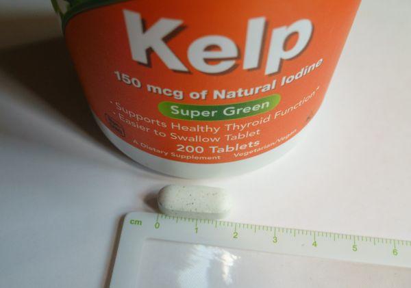 now_kelp_2.jpg
