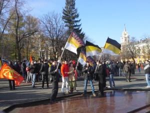Русский Марш в Воронеже 2012 состоялся ( видео+фото )