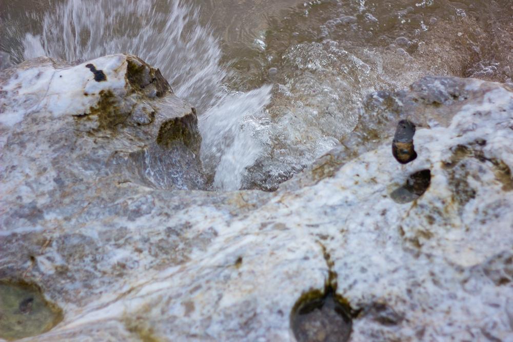 Из воды пришедшие