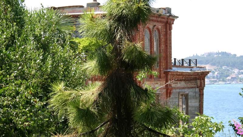 Дом Троцкого на Бююкаде, фото: Бертил Видет