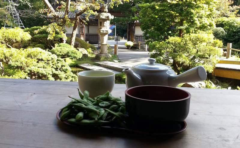Чаепитие в японском саду