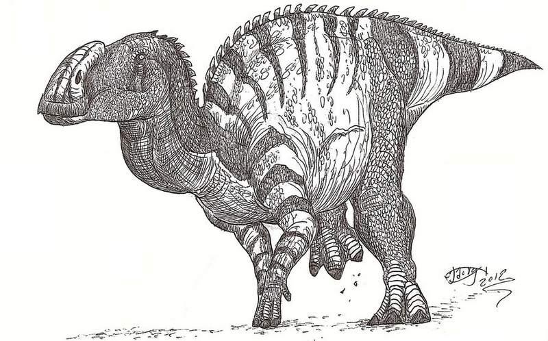 Иллюстрация Hodari Hundu, оригинал по ссылке