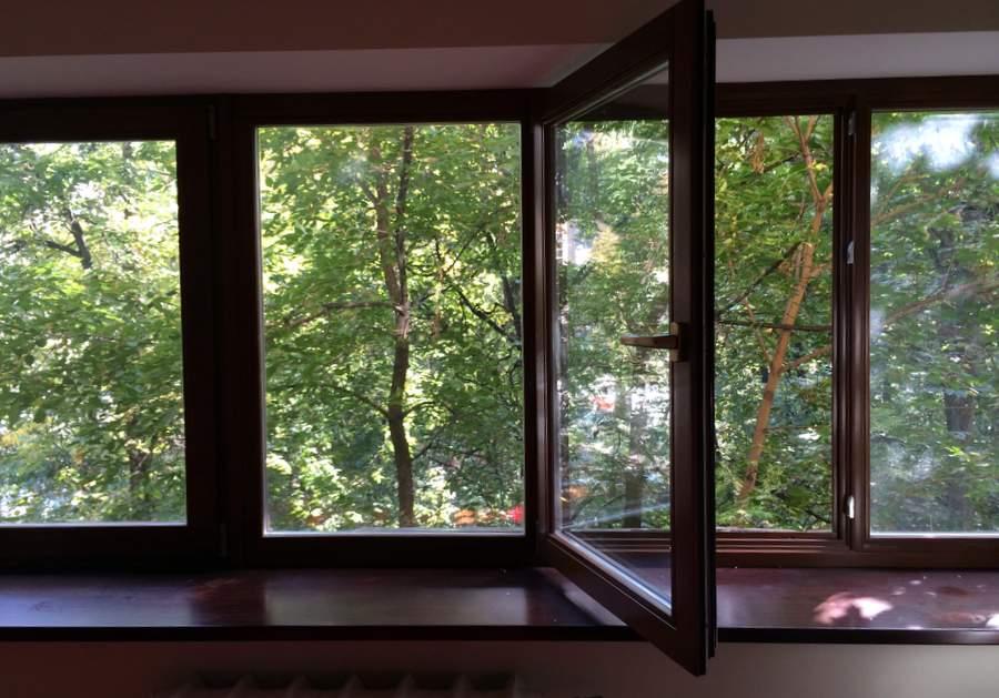 Окно моей спальни, вид изнутри