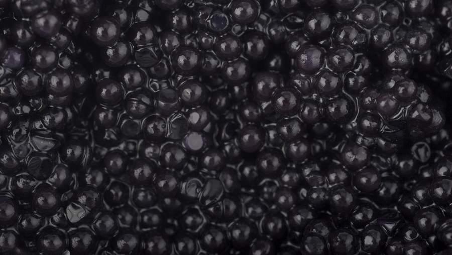 Чёрная икра