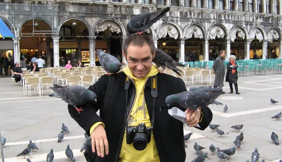 Кормёжка голубей, 2007