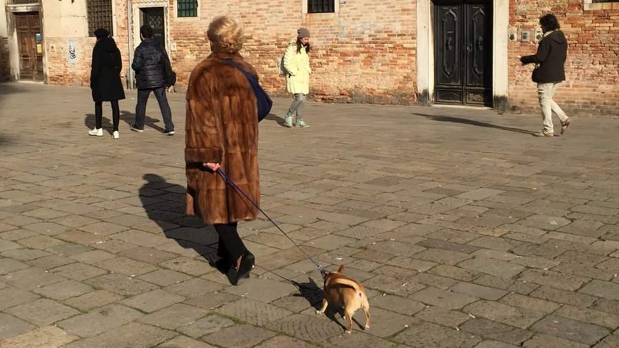 Выгул собаки на Санта Мария Формоза