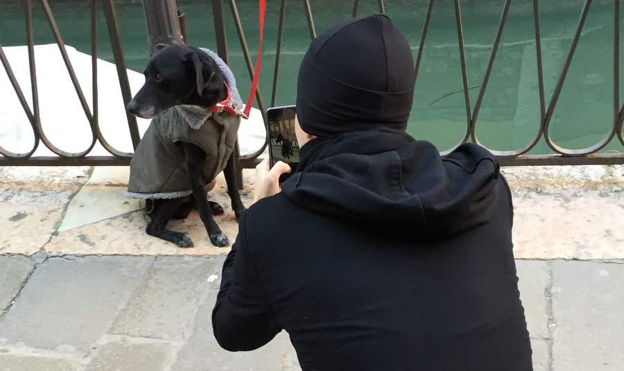 Паоло Дурини фотографирует собаку