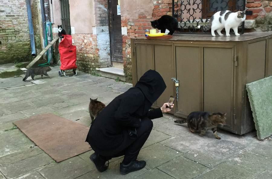 Павел Дуров фотографирует котэ