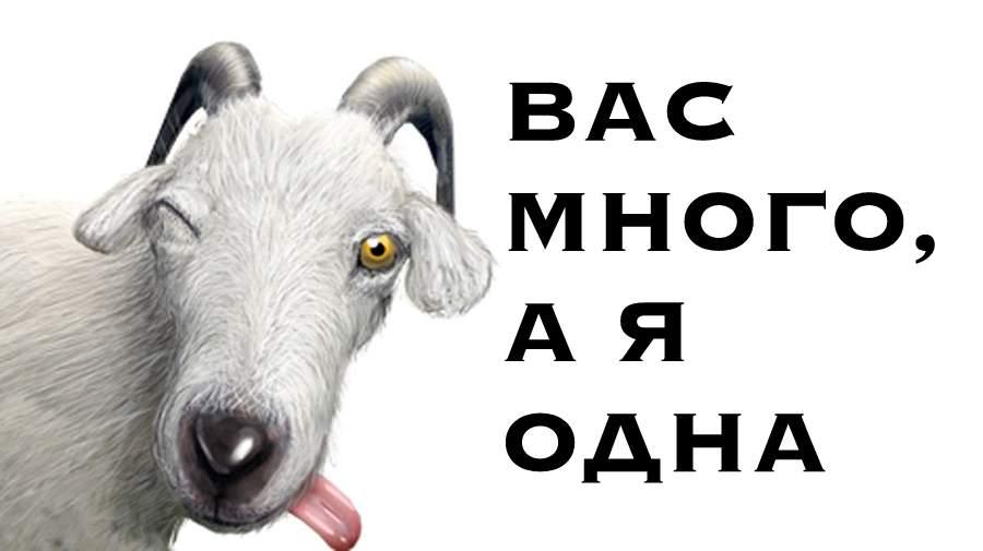 Козёл Фрэнк