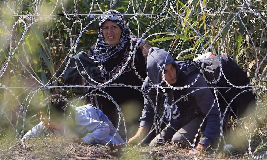 Сирийские беженцы бегут из Сербии в Венгрию. Фото Бернадетт Сабо, Reuters