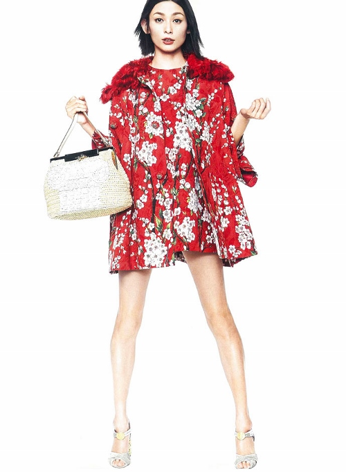 dolce-and-gabbana-dress-dress-japan-april-2014 (500x681)