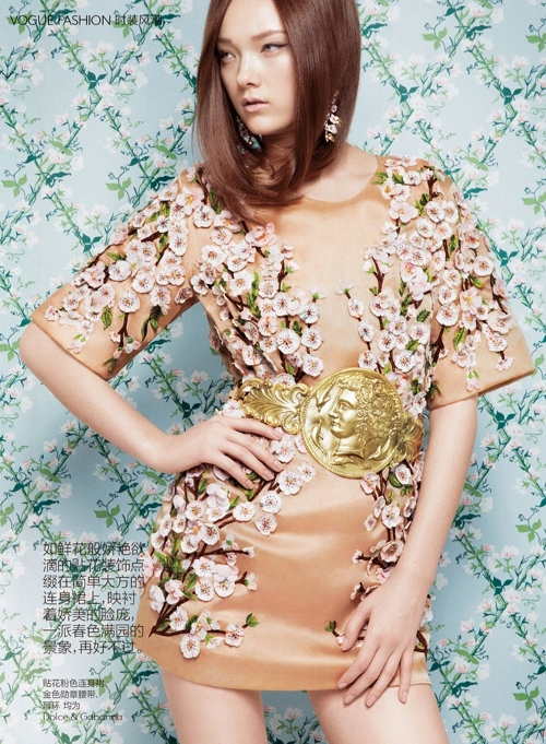 dolce-and-gabbana-dress-vogue-china-march-2014-2 (500x681)