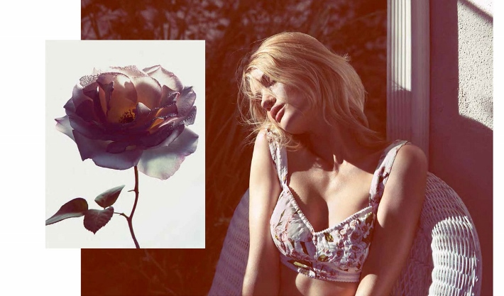 dolce-and-gabbana-floral-bra-briefs-rosie-huntington-witheley-vogue-germany-june-2014 (710x417)