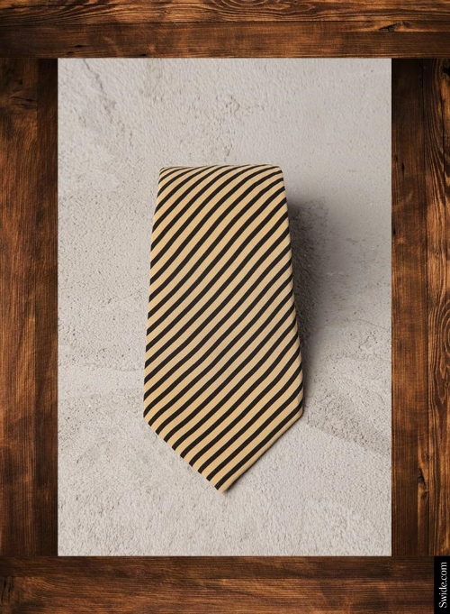 top-10-fathers-day-gift-ideas-2014-best-presents-for-dad-tie (500x681)