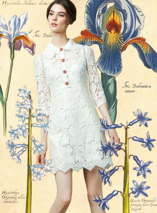 look-of-the-day-dolce-and-gabbana-spring-summer-2014-womenswear-white-lace-mini-dress