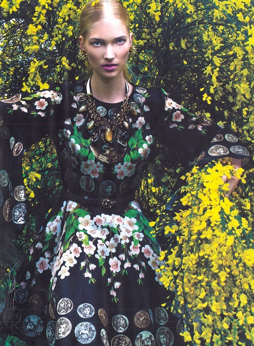 dolce-and-gabbana-dress-elle-turkey-june-2014 (500x681)