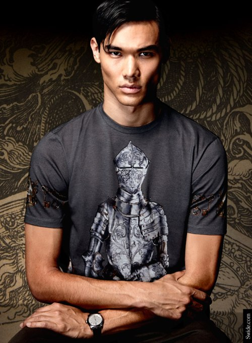 dolce-and-gabbana-fall-winter-2014-2015-man-medieval-prints-t-shirt