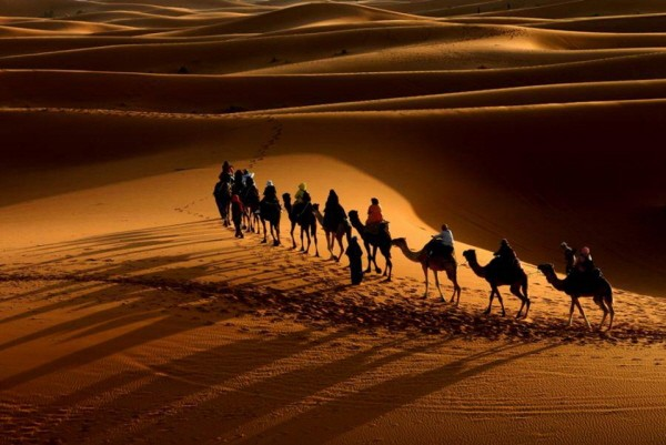 camel-caravan-in-the-desert2