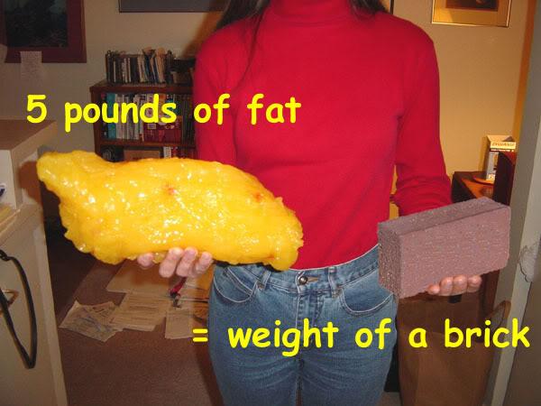 fat_5lb_brick