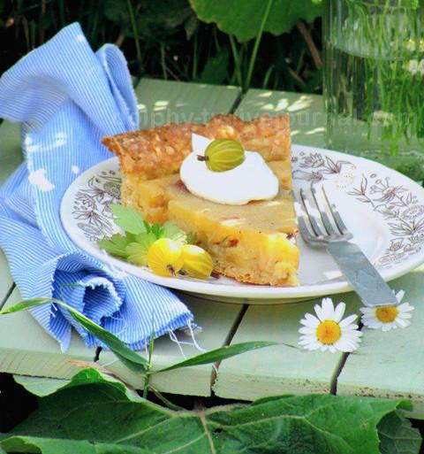Два вкуснейших сезонных пирога с ягодами