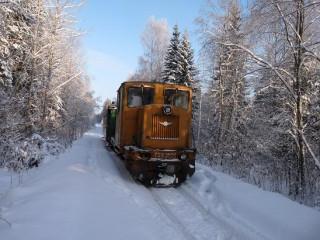 Зимняя сказка (Фото 6)