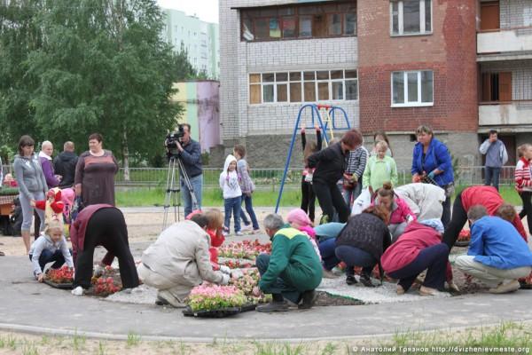 Вологда. Клумба на Псковской на месте точечной застройки (7)