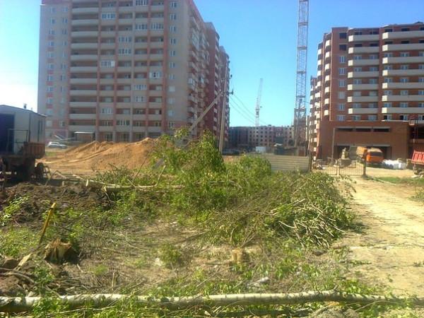 Уничтоженная зеленая зона на Окружном шоссе. Фото Игоря  Тчанникова