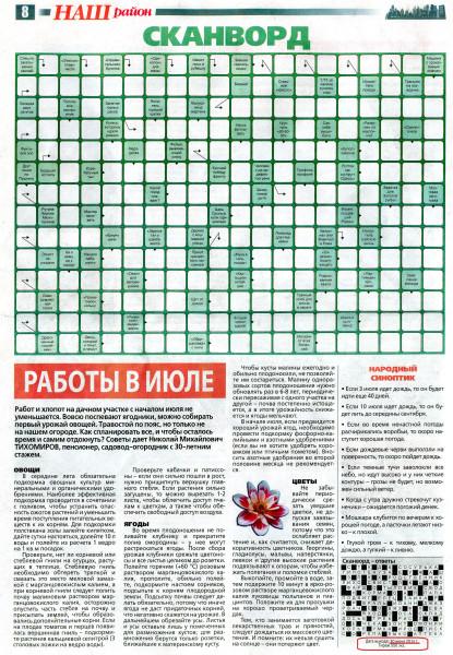 Наш район июль 2014. Елена Земчихина (8)