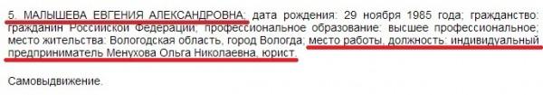 Вологда. Выборы. Кандидаты 13 округ Малышева Евгения