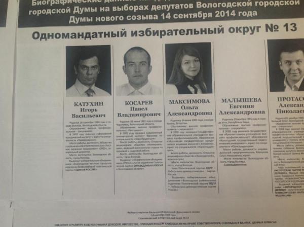 Ольгу Доможирову сняли с выборов (5)