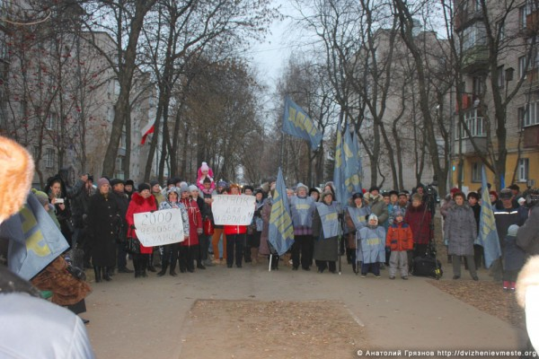 Митинг 23 ноября 2014 года за сохранение городского рынка (9)